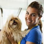 pet-shop-animais-estimacao-veterinaria